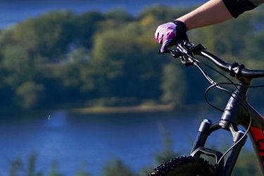 6 Ways to Get into Mountain Biking