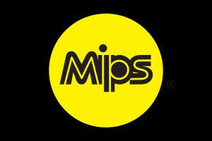 Qu'est ce que le système MIPS ?
