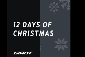 Here Is Your Chance To Win Some Amazing Prizes With Giants 12 Days Of Christmas Giveaway!