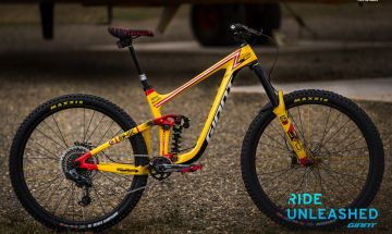 Custom Reign Advanced 29 Enduro Bike