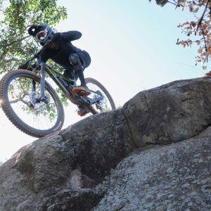 Reign 29 Bike