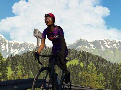 Building the Purple Armada: Meet Fran Bambust