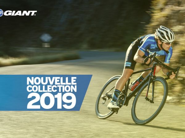 Nouvelle Collection Giant 2019 !