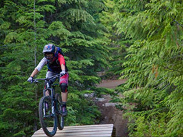 산악 자전거 서스펜션 기초 이론