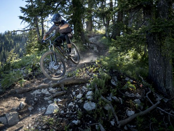 Giant Launches New Reign 29 Enduro Bikes!