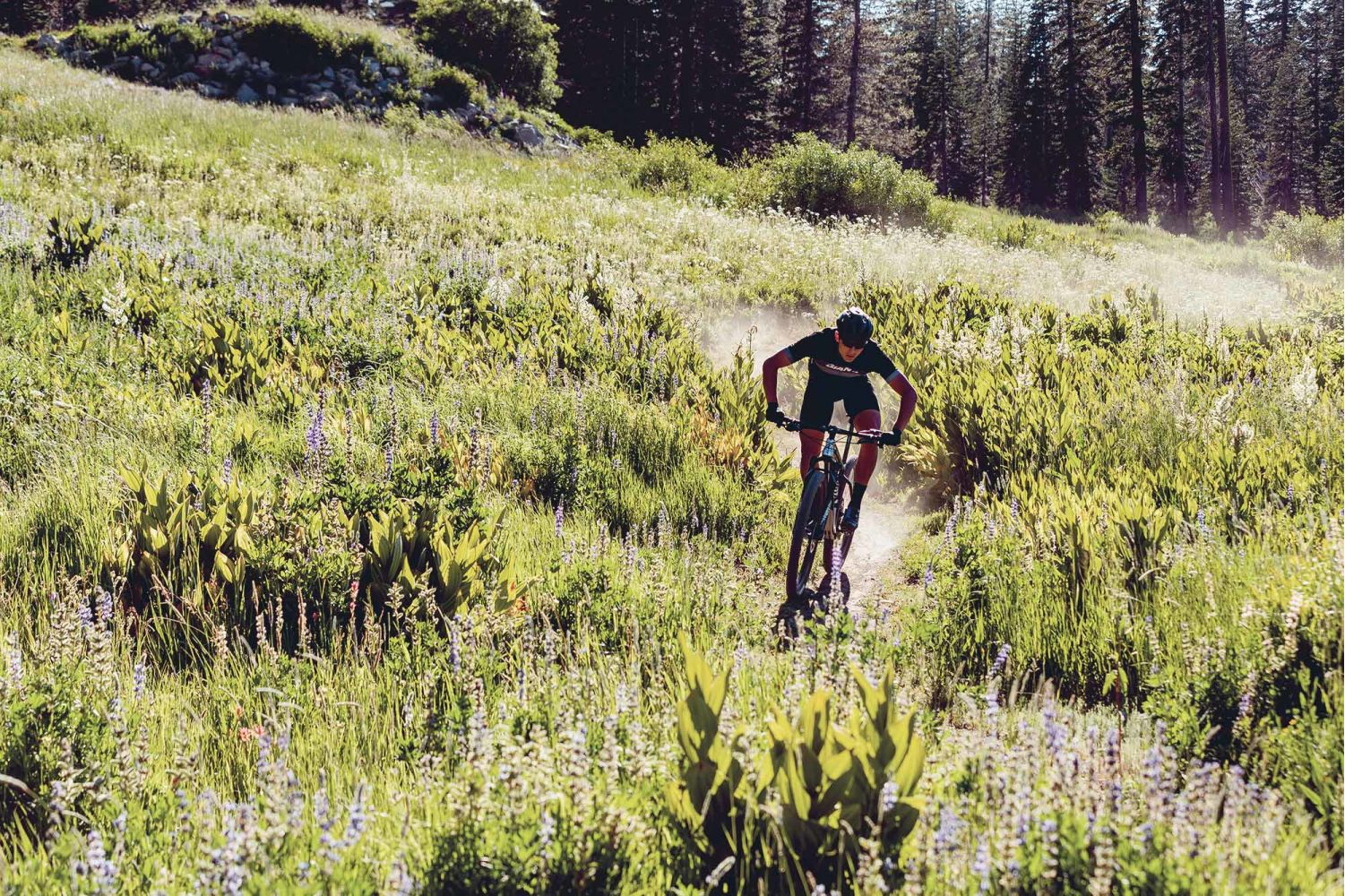 2019 XtC Advanced 29 | Giant Bicycles Official site