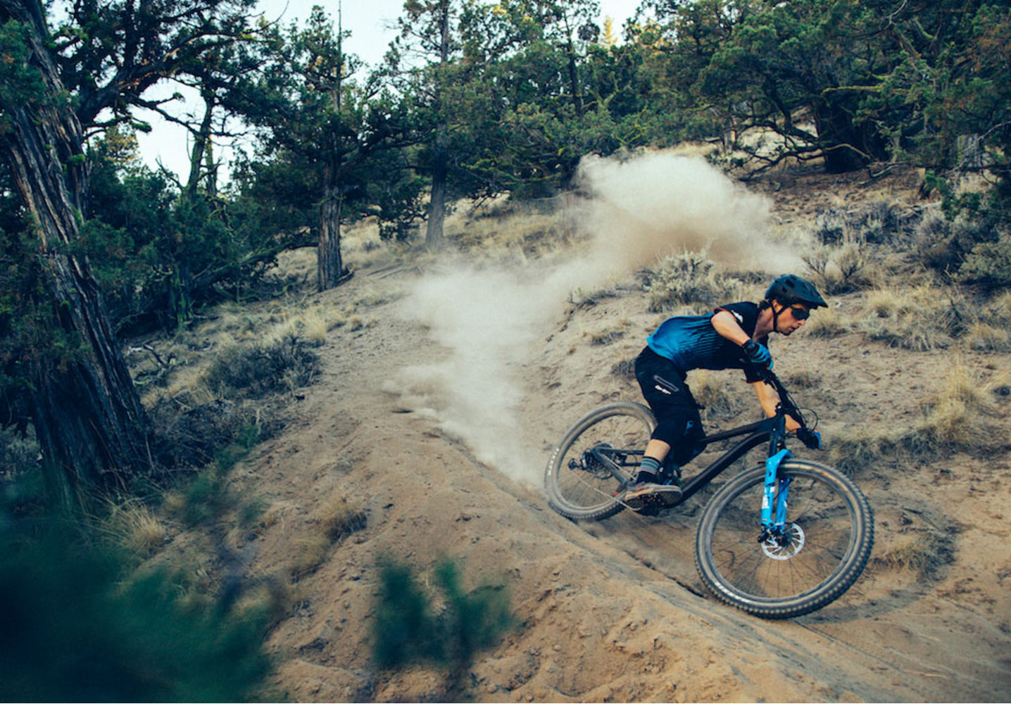 2019 Trance Advanced Pro 29 | Giant Bicycles Official site
