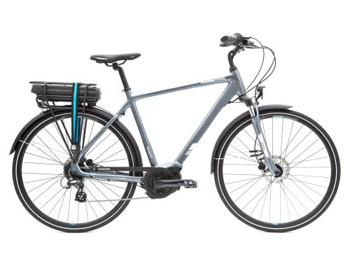 Entour E+ 2 Disc Electric Bike