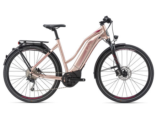 Amiti E+ 1 Electric Bike