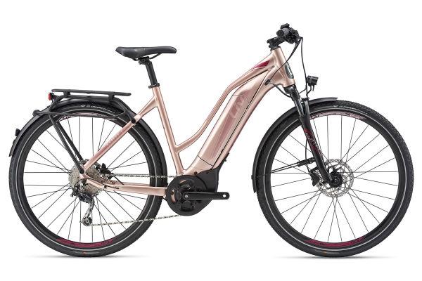 Amiti E+ 1 Electric Bike