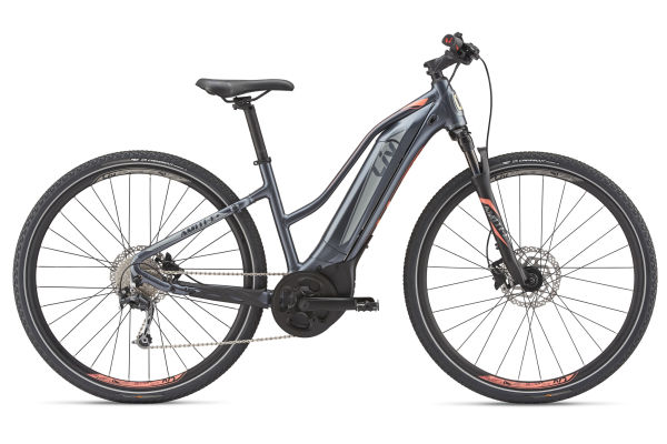 Amiti E+ 2 Electric Bike