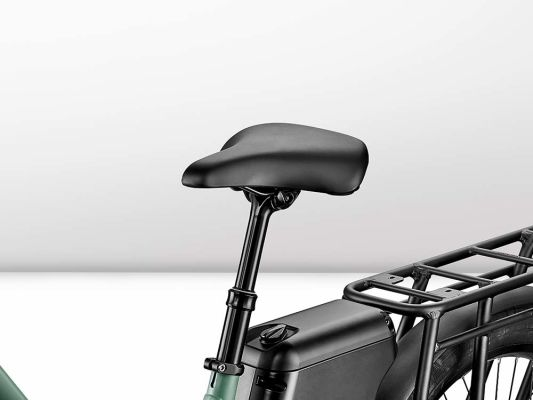 Dual-function remote controllable seat post