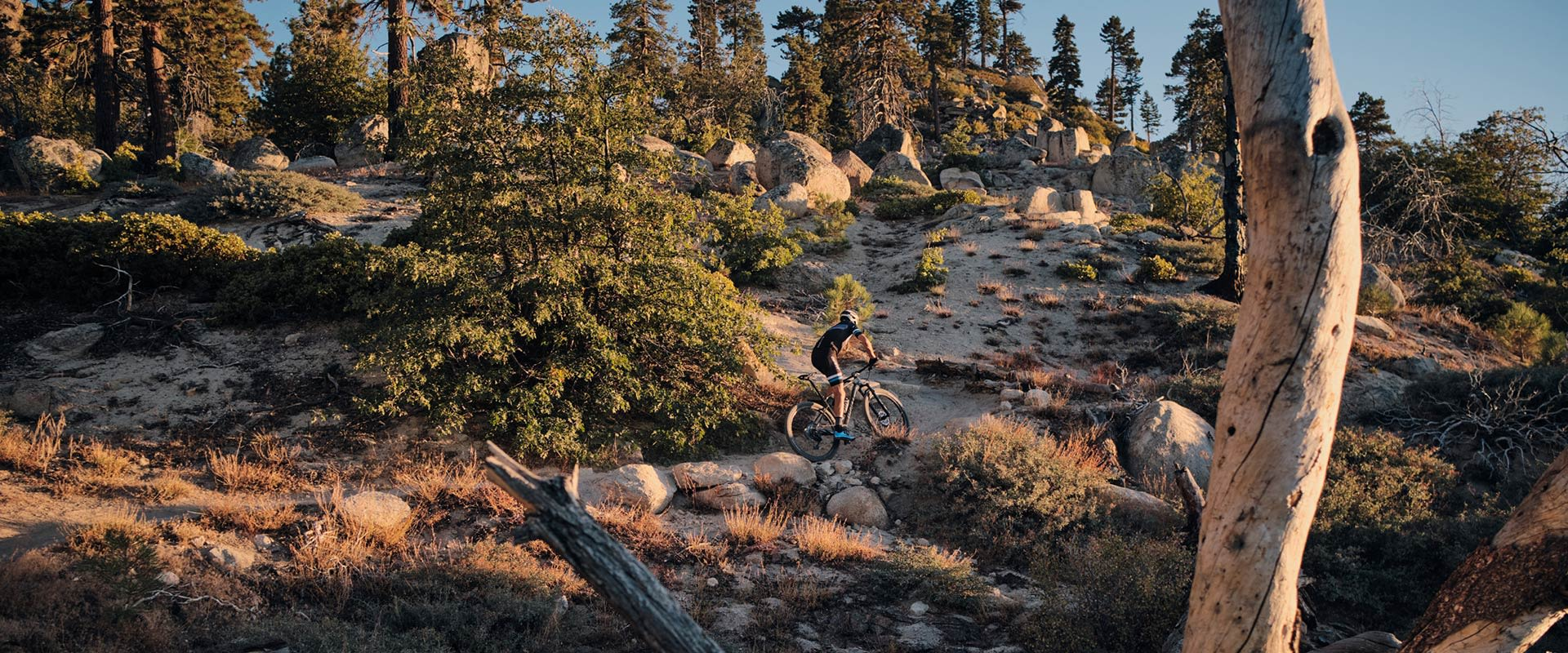 XTC Advanced SL 29 (2020) | Giant Bicycles United States