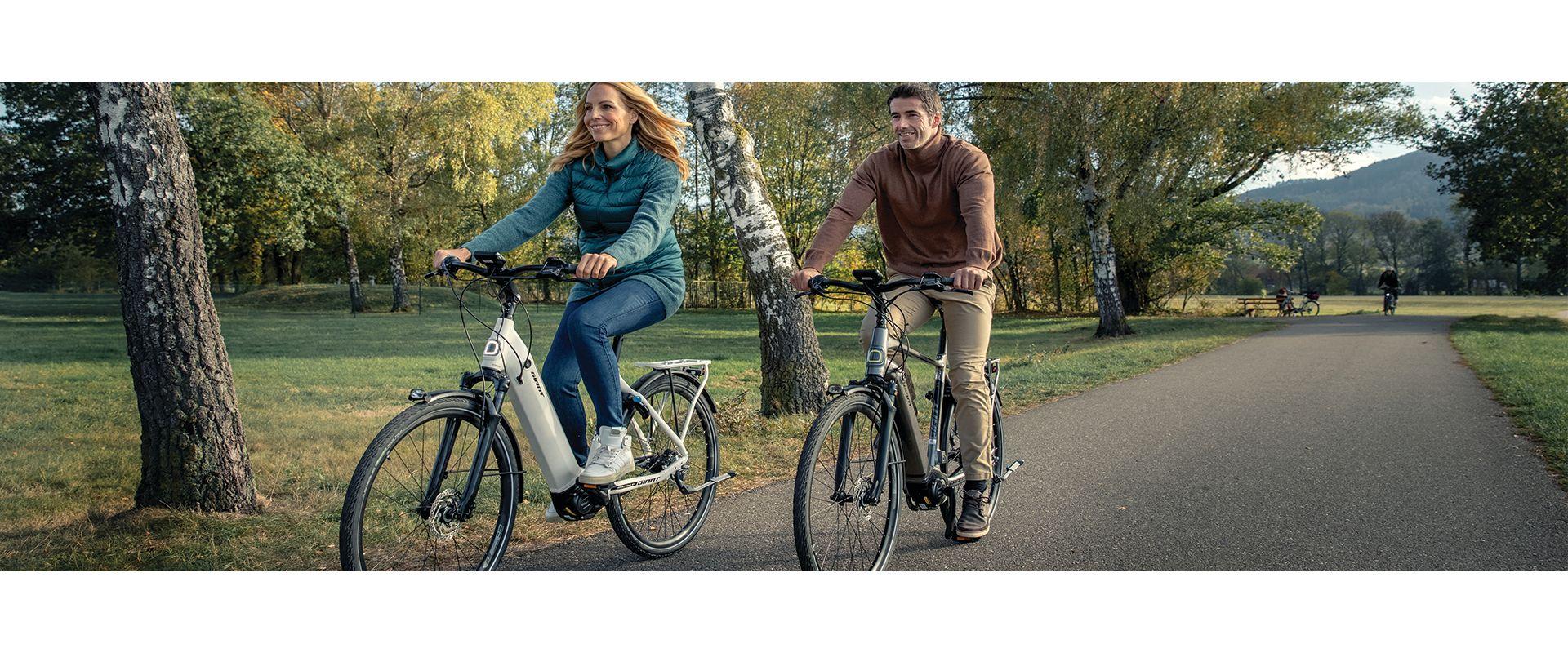 DailyTour E+ Electric Bike