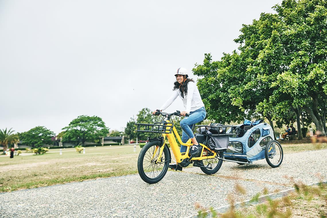 Bike with dog, cargo bike