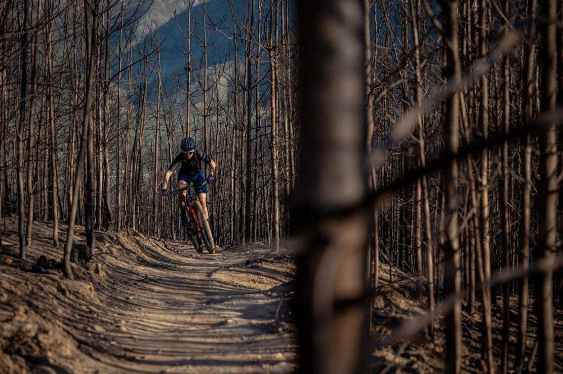 Sarah Hill riding through burned trees
