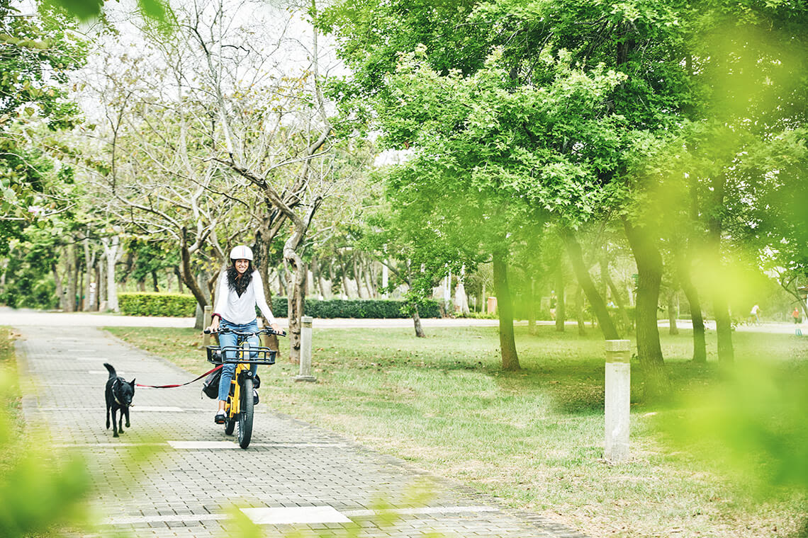 Bike with dog