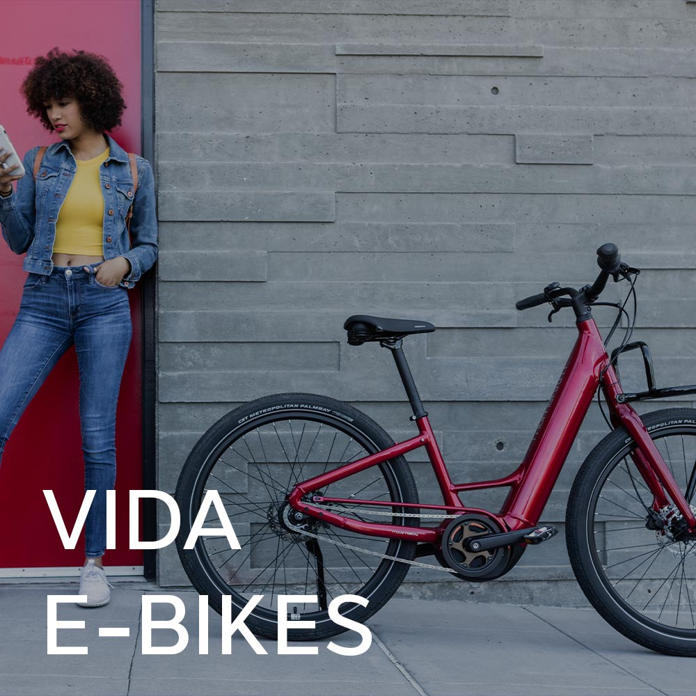 Momentum Vida Electric Bicycle